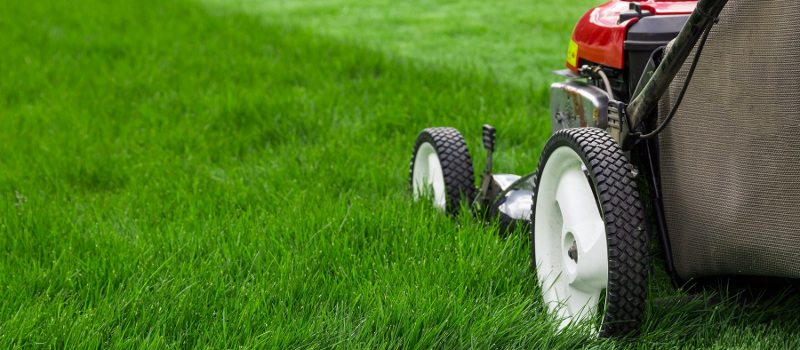 Lawn Mowing Services Denver Nc Bone S Yard Care Solutions